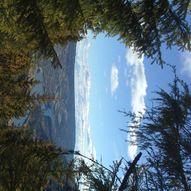Skogstur til Utsikten