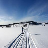 Annølskammen - Skitur