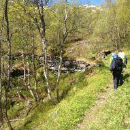 Stien mellom Kaldhusseter til Herdalseter