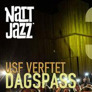 Dagspass TORSDAG 3. JUNI // Nattjazz 2021 // Avishai Cohen Trio m.fl.