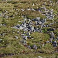 Tur til steinringer ved Upsete