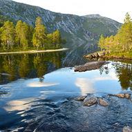 Storskogvatnet i Rago Nasjonalpark