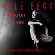 Asle Beck // Mikron - Moss