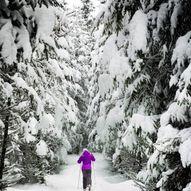 Skitur til Njukčagáisá - Svanefjell i Tana kommune