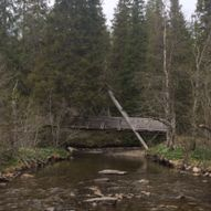 EIL Kinnartjønna - Elvran IL trimkasse - Elvarli