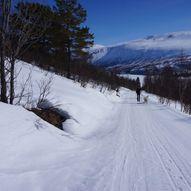 Bårdsgarden – Halsbekkdalen