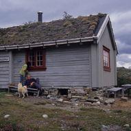 Høyt over Skjeggedal