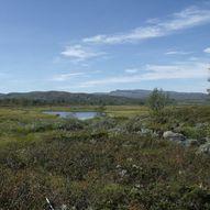 Liomseter og Fehytta til Svarthamar via Reinhamran