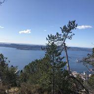 Sørsiden av Skredderdalen opp eggen til Fløyfjellet