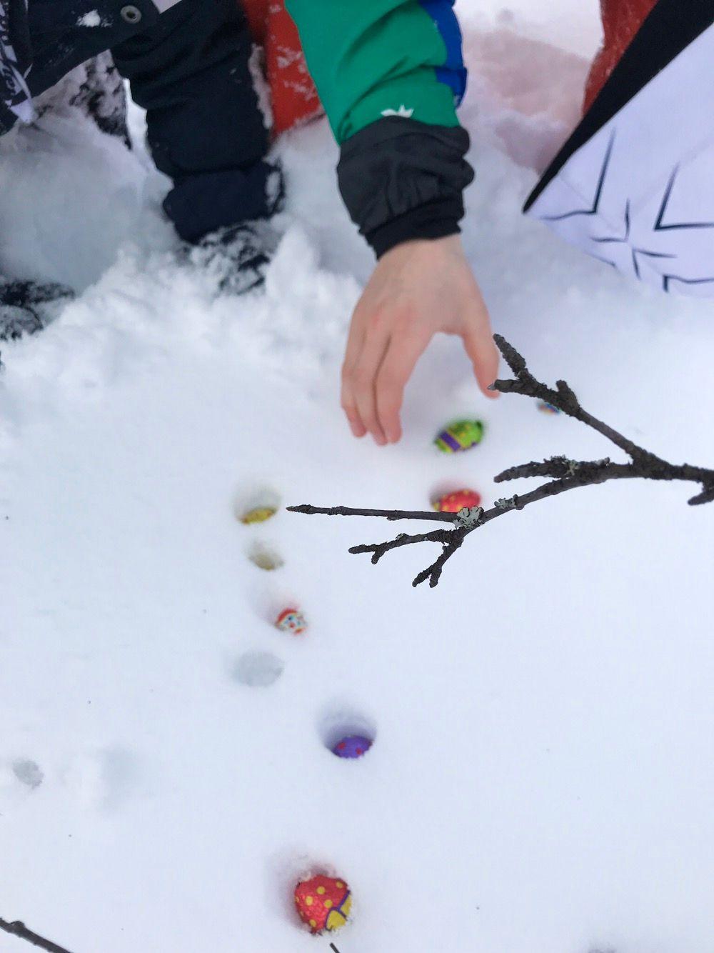 Egg i snøen