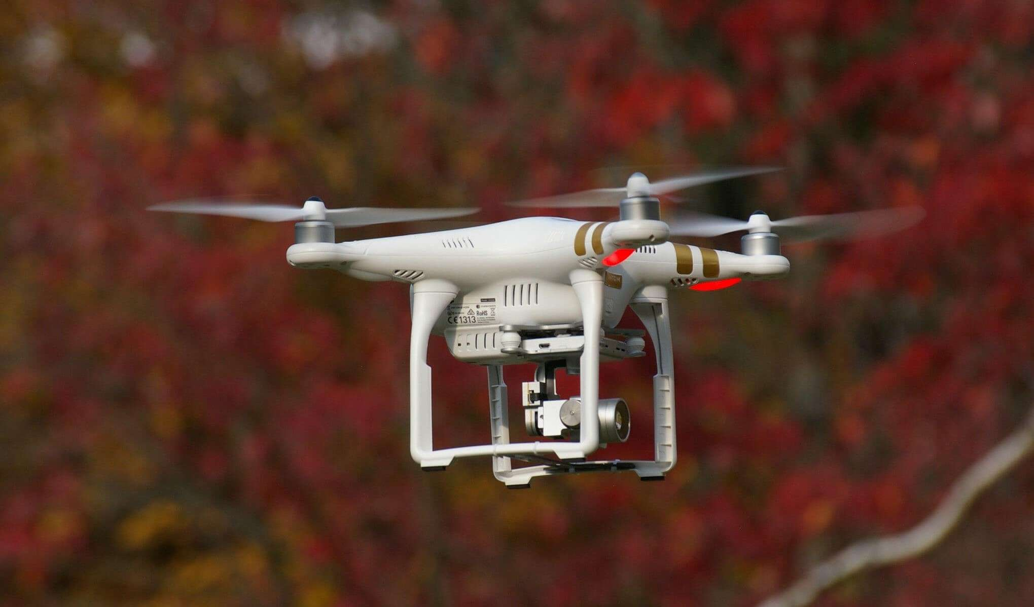 Drone technology | drones in forestry