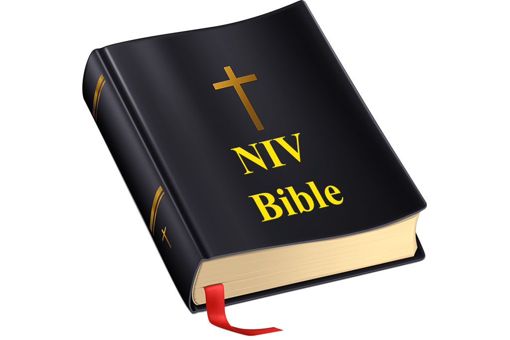 NIV Bible (Audio Bible)