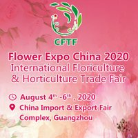 Flower Expo China logo