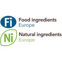 Fi Europe & Ni logo