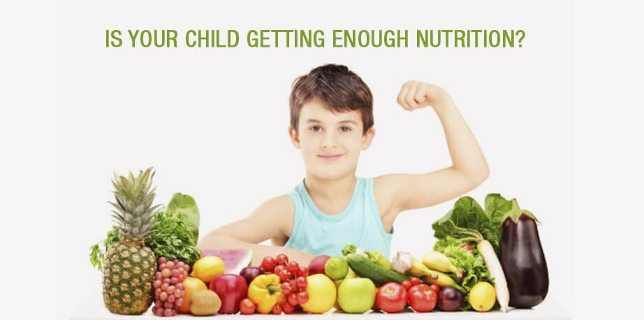 Child's Nutritions Program Guide
