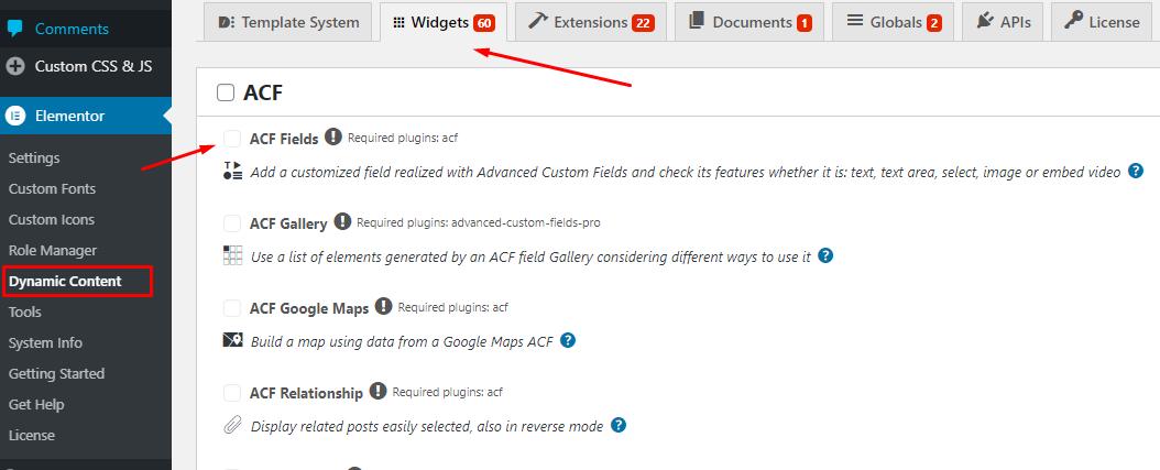 Dynamic Content Plugin WordPress Settings