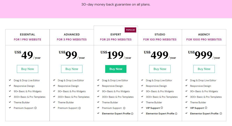 Elementor Pro Pricing Plans