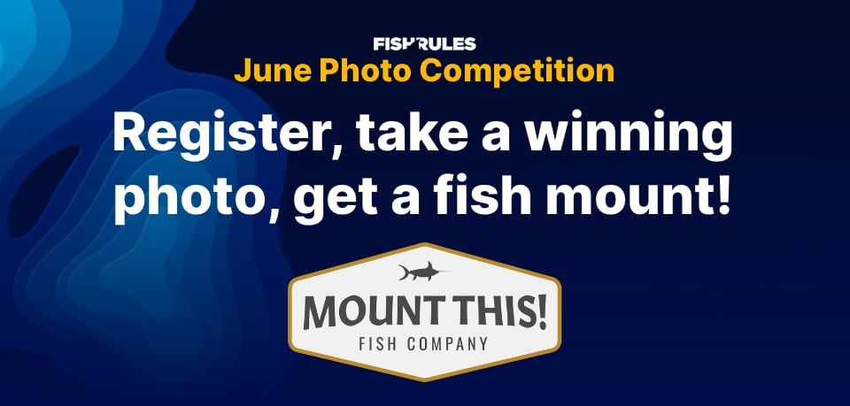 Fish Rules Photo Competition