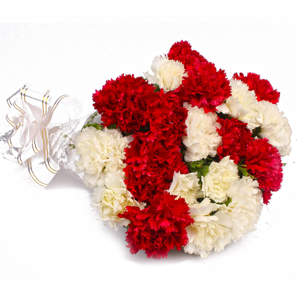 Red & White Carnations Bouquet