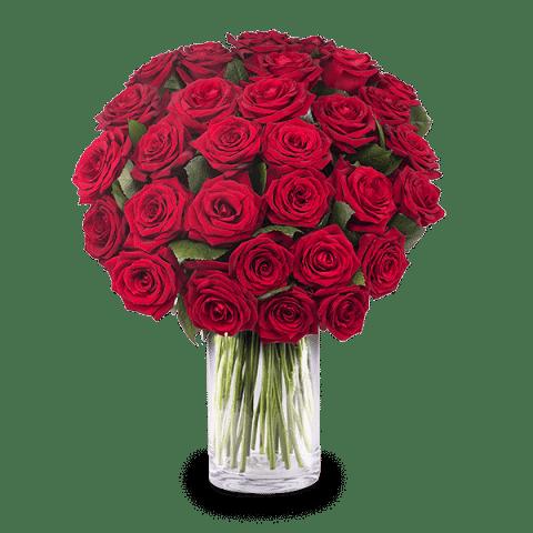 Roses Affairs