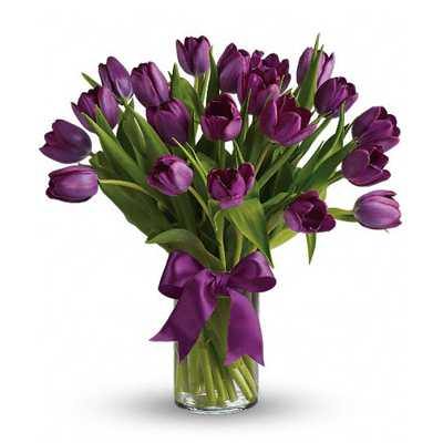 Lavish Purple Tulips