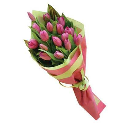 Pleasing Pink Tulips