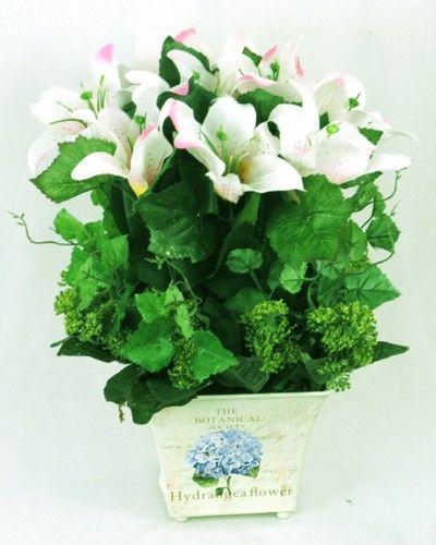The Botanical Garden - White