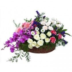 Deal of The Day - Beautiful Flower Basket