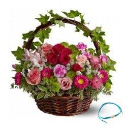 Mixed Flower Basket - Friendship Day