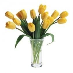 Endearing Yellow Tulips