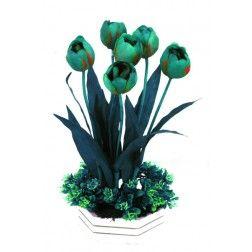 Tulip Blast