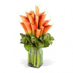 Orange Calla Lilies