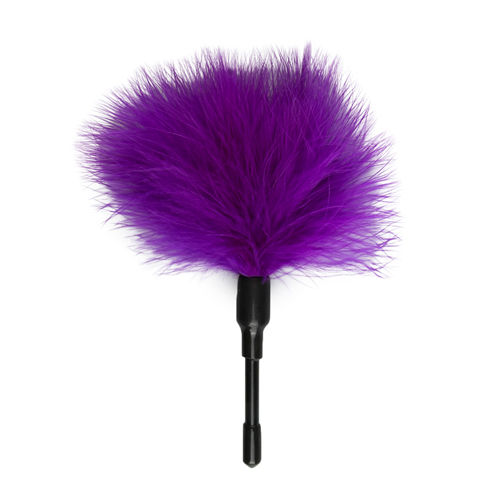 Easytoys Fetish Collection Small Tickler - Purple