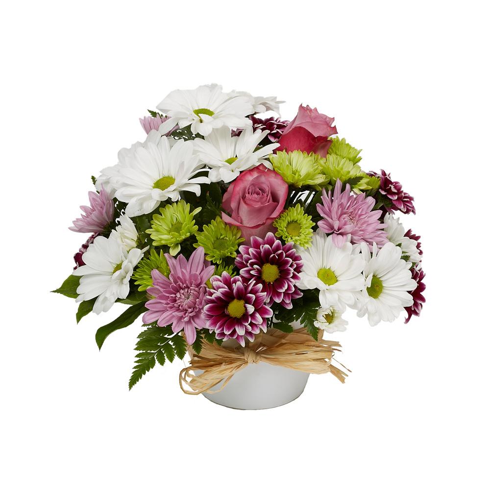 Enchantment - Floral Arrangement