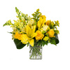 Sunshine Surprise - Floral Arrangement