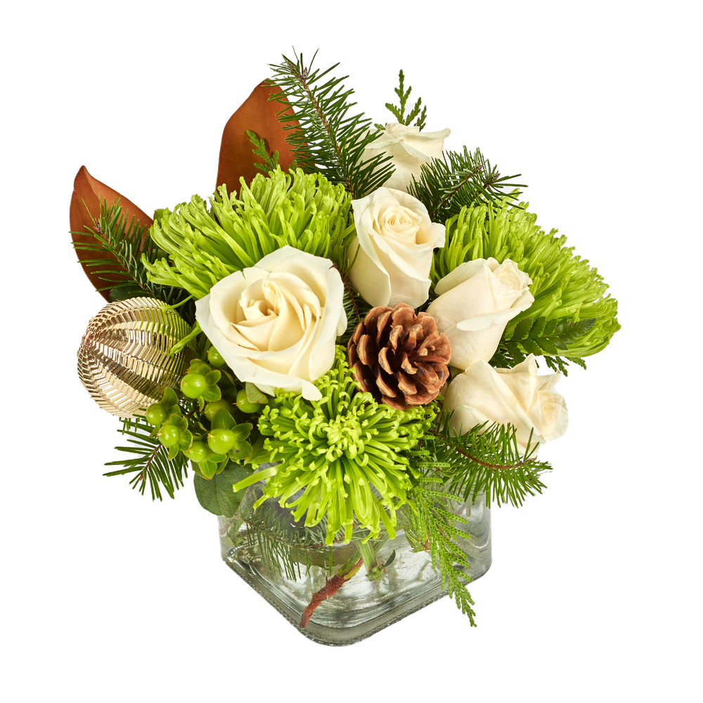 Winter Blooms Of Green And White - Floral Arrangement