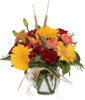 Shades of Fall with Yellow Gerbera Daisies, Orange Carnations and Fiery Red Roses