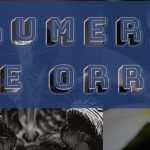 Areej Le Dore Plumeria De Orris 5th collection Perfume Review and Score