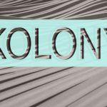 Rasei Fort Kolonya Fort & Manle Splash Cologne Perfume Review and Score