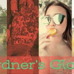 ST. Clair Scents Gardner's Glove Fragrance Review and Score