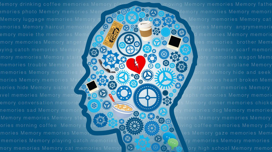 6 способов запоминания в долговременную память