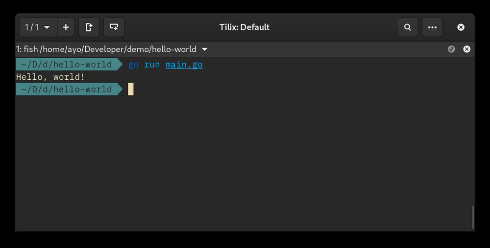 Screenshot showing output of go run main.go