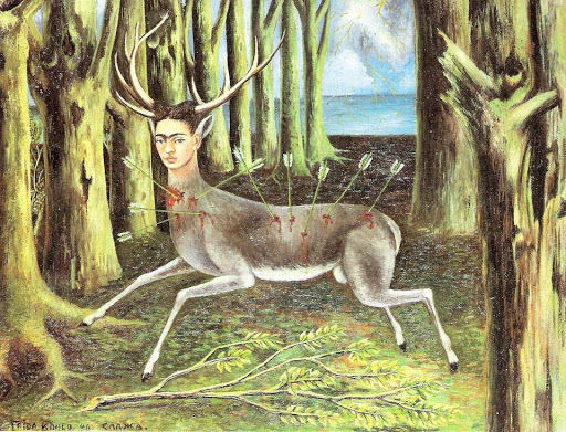 Veja como a relação com animais influenciou a vida de Frida Kahlo
