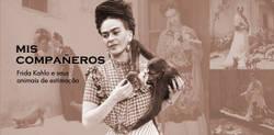 Apesar de pouco se falar no assunto, Frida Kahlo era apaixonada por animais. Tanto é que teve diferentes animais de estimação e também os retratou em diversas obras.