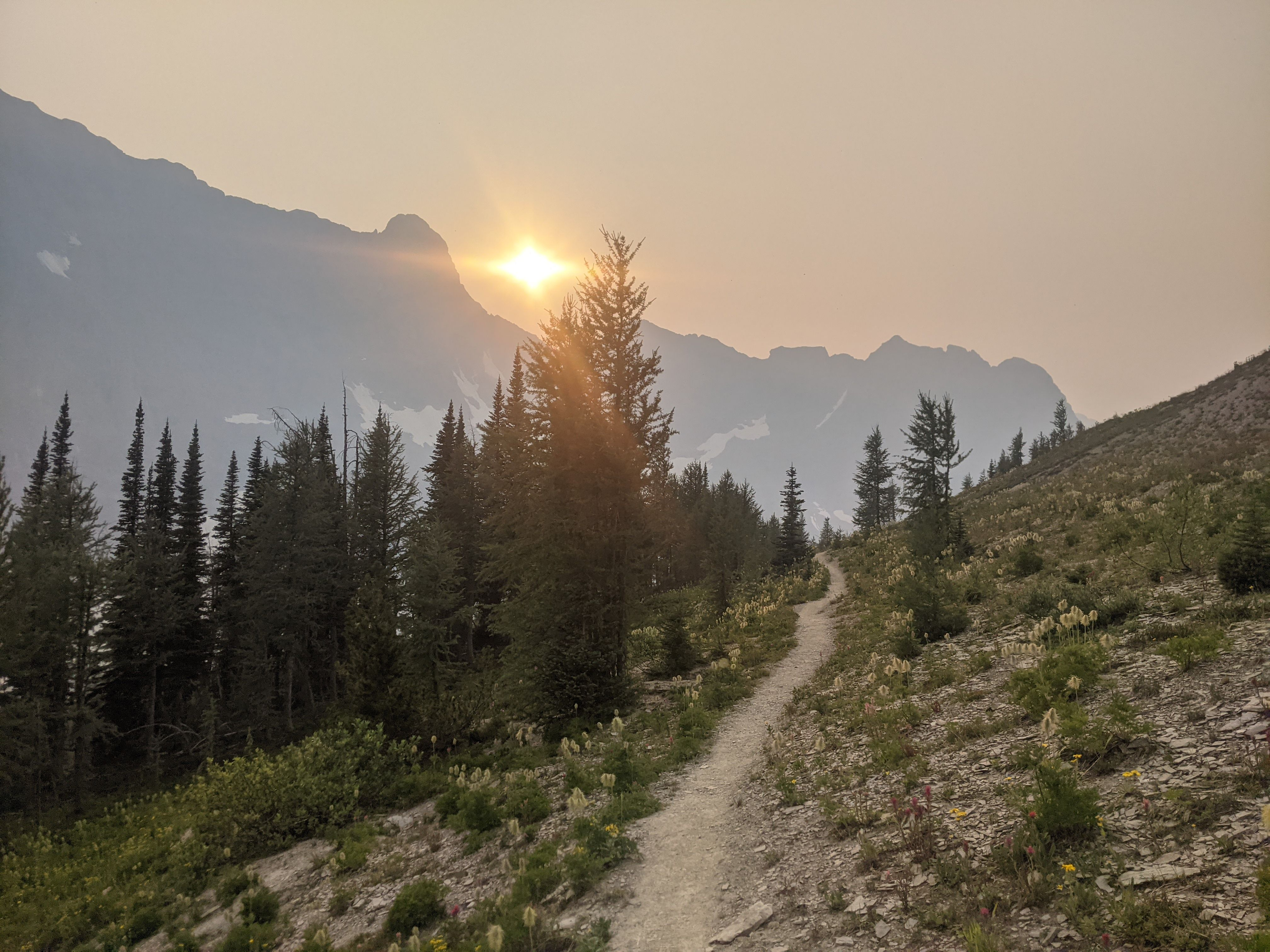 Great Divide Trail: Banff to Field
