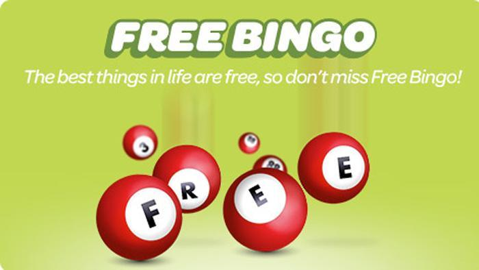 What are the Different Bingo Bonuses You Can Earn?