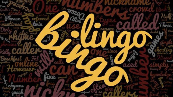 Bingo Lingo: Bingo Terms You Need to Know