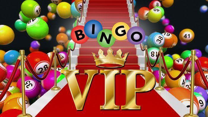 Bingo VIP Programs Explained