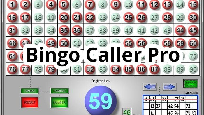 Bingo Caller Pro Software for your Bingo Social Gatherings!