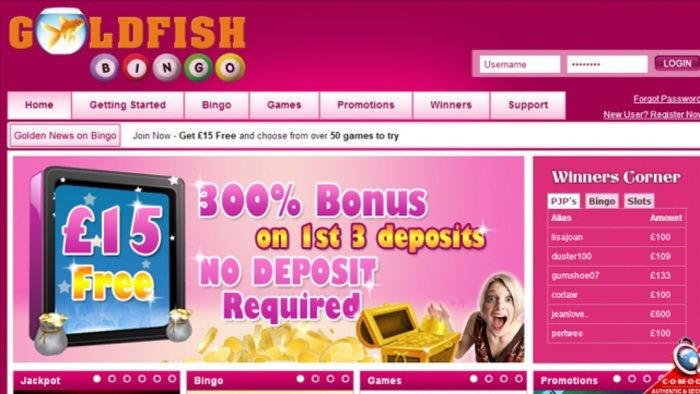 Goldfish Bingo's Back With Exciting Bonuses!